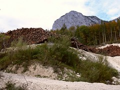 Grundlsee P1000257 (martinfritzlar) Tags: grundlsee gösl schachen backenstein ausseerland salzkammergut steiermark österreich alpen landschaft steinbruch berg wald holz styria austria alps landscape mountain forest wood quarry