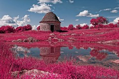 Life in pink - La vie en rose - Infrared (Sébastien Vermande (Only the Weekend)) Tags: canon100d france midipyrénées lot causse printemps spring paysage landscape nature réflexion reflection lake lac eau water prairie campagne countryside arbres trees nuages cloud sigmaart1835mmf18dchsm vermande
