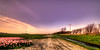 A herd of wind turbines passing by. (Alex-de-Haas) Tags: 11mm adobe blackstone d850 dutch hdr holland irix irix11mm irixblackstone lightroom nederland nederlands netherlands nikon nikond850 noordholland photomatix beautiful beauty bloem bloemen bloementeelt bloemenvelden cirrus floriculture flower flowerfields flowers landscape landschaft landschap lente lucht mooi polder skies sky spring sun sundown sunset tulip tulips tulp tulpen zonsondergang