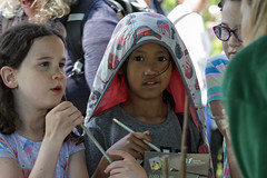 Edinburgh Botanic Gardens BioBlitz 2018 -150 (Philip Gillespie) Tags: • edinburgh royal botanic gardens 2018 big bioblitz bio blitz kids children men women man woman people fun faces smiles water wet insects bugs moths spiders legs arms eyes hats grass trees bushes plants short pool sun sky pond lilly wings park nature colour green blue red yellow orange purple science teach record check house cottage photo photography canon 5dsr rbgenature thebotanics dipping worms birds bigbotanicsbioblitz