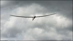 Ventus 3 finishing (Rob Millenaar) Tags: france gliderflying glider ventus3 sgp soaring