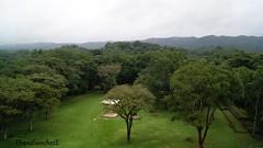 Z.A. Bonampak, Chiapas (dsancheze1966) Tags: mayas mayan chiapas archeology arqueologiamexicana sony bonampak