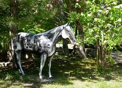 Horse sculpture, Montana State University Billings (ali eminov) Tags: billings montana universities montanastateuniversitybillings sculptures horsesculpture