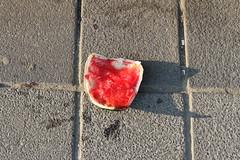Melone (www.sommer-in-hamburg.de) Tags: hafen altona abenddämmerung melone müll hamburg mai frühling hitzewelle