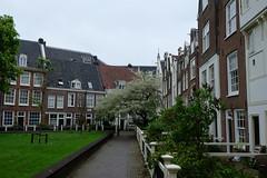 Begijnhof (sottolestelle) Tags: amsterdam hollande paysbas begijnhof