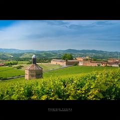 Beaujolais Sun (dominikfoto) Tags: beaujolais chateau paysage pierresdorées vignes patrimoine fusina fusinadominik landscape france rhonealpes