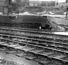 A4 Class 60032 Gannet takes the line to go on shed at Doncaster, 10th Aug 1963. (Dave Wragg) Tags: 60032 a4class gresley doncaster streak lner steam loco locomotive railway