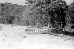 041269 18 (ndpa / s. lundeen, archivist) Tags: nick dewolf nickdewolf blackwhite photographbynickdewolf bw 1969 1960s 35mm film monochrome blackandwhite april usvi virginislands usvirginislands stthomas caribbean coast water ocean watersedge beach bay hullbay tree trees sand boat beached