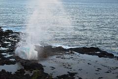 DSC33_18796 (heartinhawaii) Tags: sproutinghorn blowhole water sea seaspray shore lavarocks sunset evening dusk pacificocean lawai kauai hawaii nature nikond3300