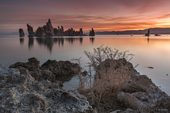 Sunrise at Mono Lake (madrones) Tags: glass monolake landscape leevining northamerica sierranevada water lake weather orange clouds northerncalifornia california unitedstatesofamerica colorful pink tufa mirror color sunrise nature easternsierra ca colour dawn monocounty tufas usroute395 us395 usa leevinning us