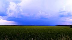 Távoli zivatar a préri felett (Ják közelében) (milankalman) Tags: storm rain weather summer countryside prairie landscape