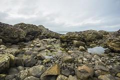 18MAR15 SLYNNLEE-7461 (Suni Lynn Lee) Tags: giantscauseway giants causeway northern ireland ni landscape scenic rocky beach volcanic