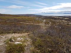 "This is ""Fossefjellet"" (GeirB,) Tags: varanger vadsø vadsoe varangerfjorden østfinnmark outdoor friskifinnmark liveterbestute trening trekfuelex9 sweethelmet diadora sram training trailbike stisykling terrengsykling norway nordnorge northernnorway arctic 70north gopro garmin gps 29x240 fu fulldemper lyng landscape moor"