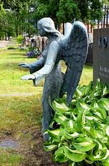Guardian Angel (sakarip) Tags: sakarip angel guardianangel cemetery kymi karhula kotka kyminhautausmaa suojelusenkeli tomb graveyard stone statue