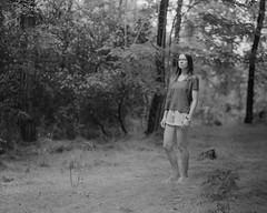 P (Attila Pasek) Tags: 14inchf63 8x10 commercial ektar kodak vds vdscameramanufactory bw blackandwhite film forest girl largeformat portrait tree woman
