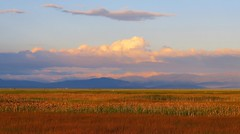 Golden Valley - Alamosa National Wildlife Refuge (Patricia Henschen) Tags: goldenhour alamosacolorado alamosa alamosanationalwildliferefuge nationalwildliferefuge colorado clouds mountain mountains sangredecristo catchycolors