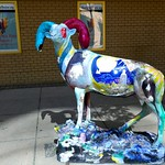 Sculpture of bighorn sheep, downtown Billings thumbnail