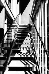 chaotic diagonals (Armin Fuchs) Tags: arminfuchs diagonal stairway light shadows stripes würzburg burkardushaus dom