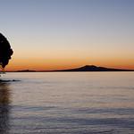 Iconic Rangitoto Island, Auckland, New Zealand thumbnail
