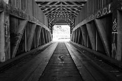 DSCF5985-2127.jpg (RHMImages) Tags: monochrome xt2 creek river landscape historic oregoncreek bnw water northsanjuan coveredbridge interior tahoenationalforest blackandwhite fujifilm fuji