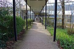 INS HEA - École de plein air de Suresnes