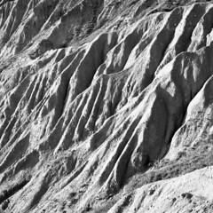The badlands - Canossa (Reggio Emilia) - June2018 (cava961) Tags: badlands canossa analogue analogico monocromo monochrome bianconero bw 6x6