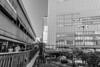 Portliner Sannomiya Station (Hideki Iba) Tags: station portliner kobe japan nikon d850 nikond850 2470 blackandwhite whiteandblack bw 黑白 白黒