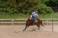 JBC_5569.jpg (Jim Babbage) Tags: krahc horseshow appaloosa horses 2018 bethany