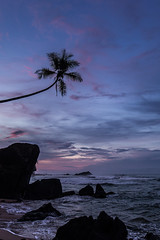 Sunrise at Delawella Beach near Unawatuna (Tim&Elisa) Tags: srilanka asia canon landscape nature seascape indianocean ocean water sea waves palmtree rocks sunrise delawellabeach beach sun clouds