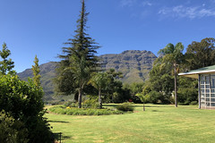 IMG_0047 (RobW_) Tags: california redwood sequoia tree gardens thehydro lindida stellenbosch western cape south africa saturday 17mar2018 march 2018