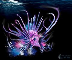 Lion Fish By Tiki Jay (wheres tiki-jay?) Tags: tiki jay one lion fish digital illustration las vegas nevada art