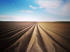 Lines that meet the horizon (Baubec Izzet) Tags: baubecizzet landscape nature lines flickrunitedaward