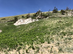 Sweetgrass Hills Montana 2018 (jasonwoodhead23) Tags: sweetgrass hills usa hiking butte montana rocks