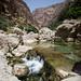 Wadi Shab at noon
