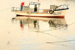 _MG_1561 (patohp1970) Tags: chile chiloe excursionfccch clavealta bote agua mar