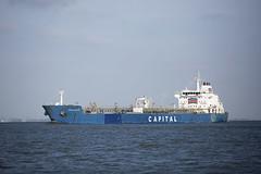 ALKIVIADIS (angelo vlassenrood) Tags: ship vessel nederland netherlands photo shoot shot photoshot picture westerschelde boot schip canon angelo walsoorden alkiviadis tanker