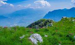 Lake Garda from the top (peter-goettlich) Tags: gardasee lago di garda italy italien italia