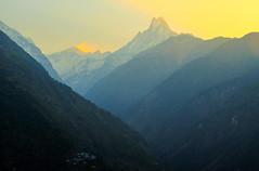 Spring Dawn (sakthi vinodhini) Tags: morning light settlement annapurna nepal himalayas abc trek backpack mountains hills greenery ngc forest landscape mountain tree mountainside sunrise sky mist golden hdr