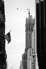 6Q3A2527 (www.ilkkajukarainen.fi) Tags: newyork happy life blackandwhite monochrome mustavalkoinen visit travel traveling bigapple isoomena city