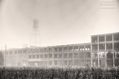 On Any Other Day (DetroitDerek Photography ( ALL RIGHTS RESERVED )) Tags: allrightsreserved packardplant detroit 313 motown detroitderek hdr 3exp canon 5d mkii digital sepia abandoned ruin icon industrial midwest usa america manufacture car automobile automotive dilapidated
