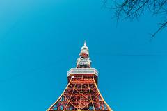 _MG_6674 (waychen_c) Tags: japan tokyo minatoku tokyotower tower architecture building cityscape sky blue red 日本 東京 港区 芝公園 東京タワー 東京鐵塔 2017東京旅行