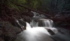 Parque nacional de Ordesa (Rafa perena) Tags: parques landscapes paisaje cascada filtrond largaexposicion sedas 2470 tamron nikond7100 pirineo ordesa rios deshielo lightroom scenery naturaleza nature
