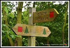 Snipe Dales 09.06.18 (9) (nowboy8) Tags: nikon nikond7200 redhill snipedales lincolnshirewildlifetrust lincolnshire wildlife walk trees