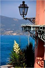 Tellaro-Liguria-Italy (marco.falaschiii) Tags: sea lampione mare blu fiori piante liguria italia tellaro riviera colori