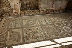 "Pula: Roman floor mosaics ""The Punishment of Dirce"" (ARKNTINA) Tags: pula pulacroatia istria istra europe croatia hr18 eur18 random6 town building architecture romanruins ruins mosaics floor mosaicfloor"