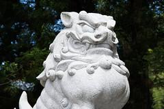 犬神 画像