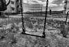 EMPTY (Sign-Z) Tags: nikon d810 monochrome 24120mmf4gvr bw park empty swing モノクローム 白黒 ブランコ 公園