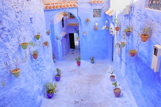 Blue alley with flower pots