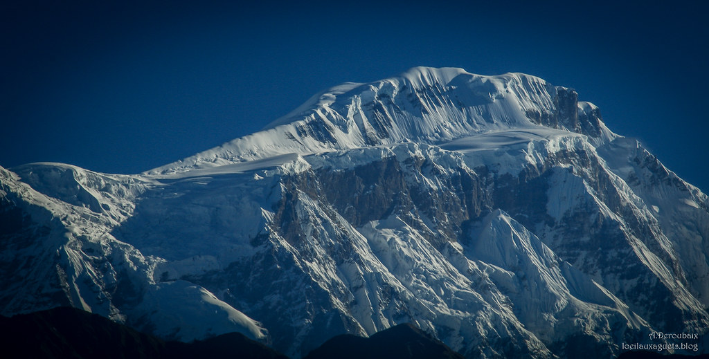 The World's most recently posted photos of annapurna and