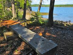 Irving Nature Park, Saint John - New Brunswick (jeffglobalwanderer) Tags: irvingnaturepark naturereserve saintjohn newbrunswick canada coastalpark nature seat bench seating seatwithaview woodenbench parkbench